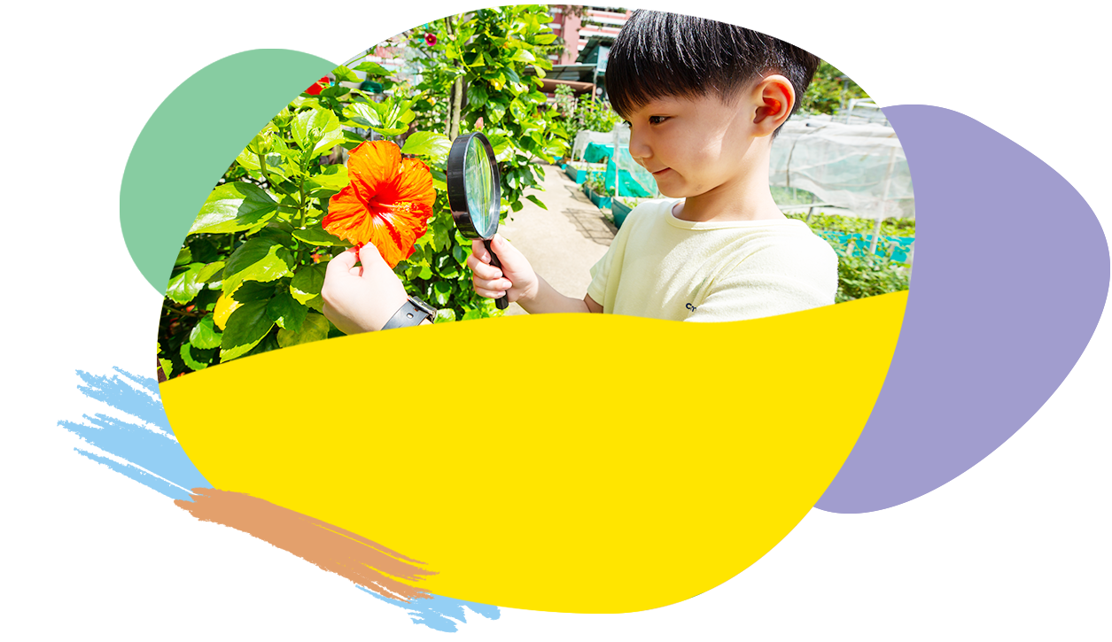top kindergarten in singapore