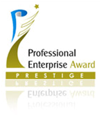 Professional Enterprise Award